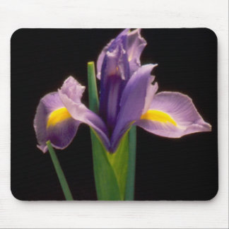 """Iris"" Mousepad by Zoltan Buday"