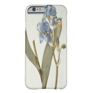 Iris Pallida, from `Les Liliacees', 1812 Barely There iPhone 6 Case