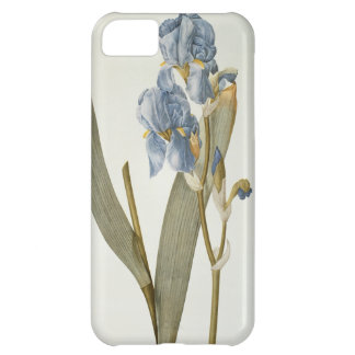 Iris Pallida, from `Les Liliacees', 1812 iPhone 5C Case