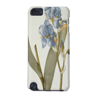 Iris Pallida, from `Les Liliacees', 1812 iPod Touch 5G Case