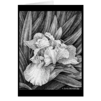Iris Pen and Ink Drawing Card