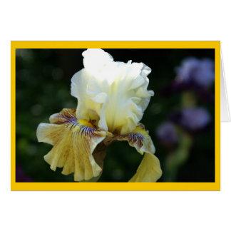 Iris Perfection Card