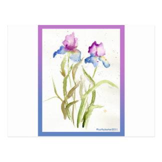 Iris Post Card