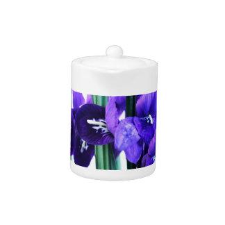 Iris Reticulata Teapot