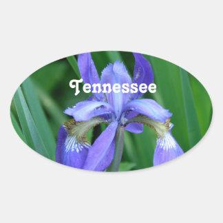 Iris Oval Sticker