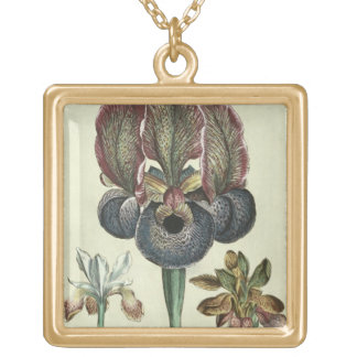 Iris susiana major and Iris bisantina angustifolia Gold Plated Necklace
