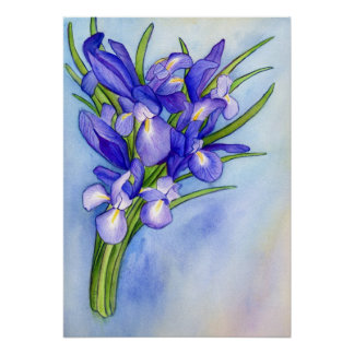 Iris Vase Watercolor Painting Art Poster Print