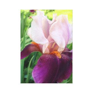 Iris Wrap Photo Wall Art Gallery Wrap Canvas
