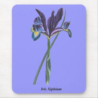 Iris Xiphium Mouse Pad