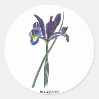 Iris Xiphium Round Stickers