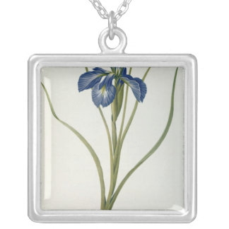 Iris Xyphioides, from `Les Liliacees', 1808 Silver Plated Necklace
