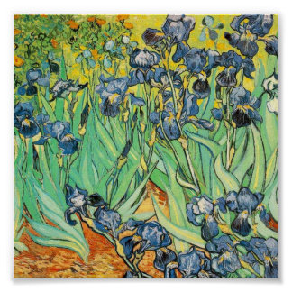 Irises 1889 by Vincent Van Gogh Poster