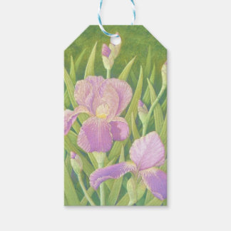 Irises at Wisley Gardens, Surrey in Pastel Gift Tags