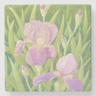 Irises at Wisley Gardens, Surrey in Pastel Stone Coaster