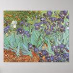 Irises by Vincent van Gogh, Vintage Fine Art Print