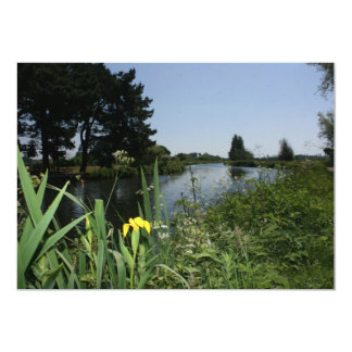 Irises growing on river bank at Canal Bank, Exeter Card