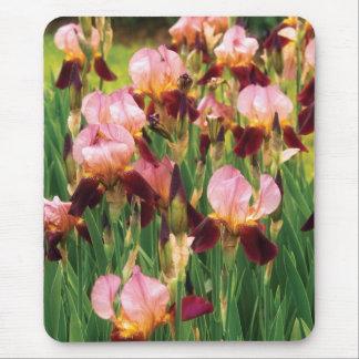 Irises - GY Morrison Mouse Pad
