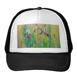 Irises in field cap