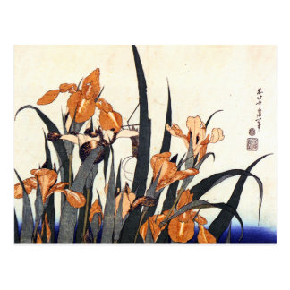 Irises, Katsushika Hokusai Postcards