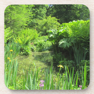 Irises & Primulas by Pond, Richmond Park Coasters