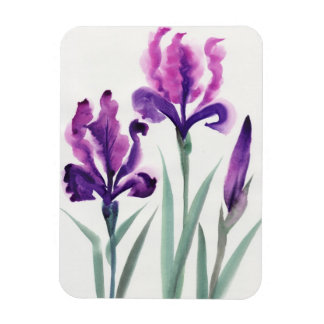 Irises Rectangular Photo Magnet