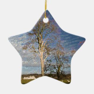 Irish Beech Trees Ceramic Star Decoration