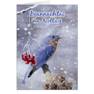 Irish - Blue Bird Christmas Greeting Card