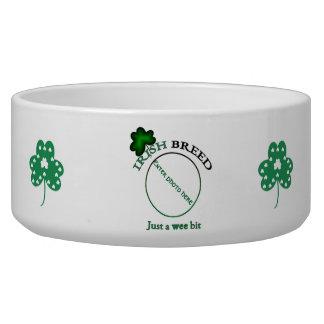 Irish breed-just a wee bit dog water bowl