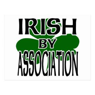 Irish By Association With Big Shamrock, Cutout Postcard
