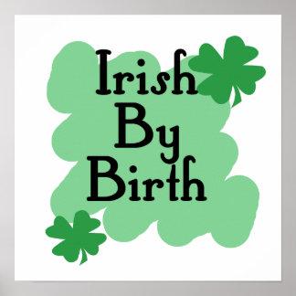 Irish by Birth Poster