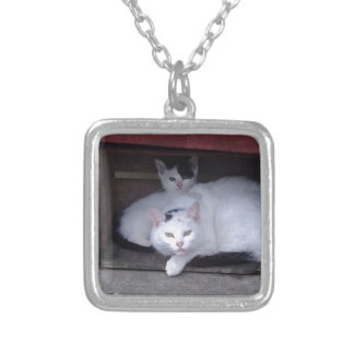 Irish Cats Take ShelterOn A Rainy Day In Ireland Square Pendant Necklace