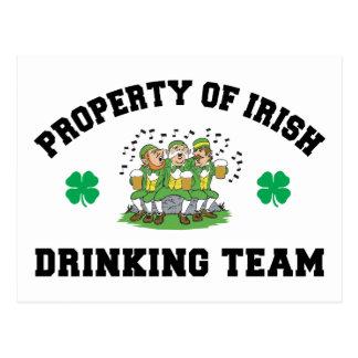 Irish Drinking Team Gift Postcard