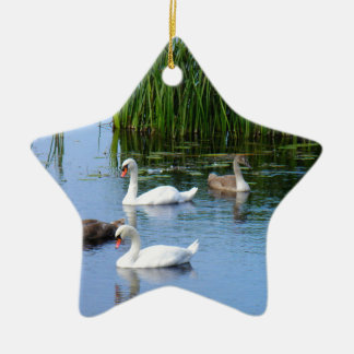 Irish ducks on the River Shannon Ceramic Star Decoration