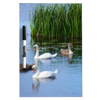 Irish ducks on the River Shannon Dry Erase White Board