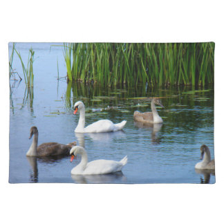 Irish ducks on the River Shannon Placemat
