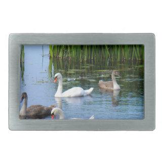 Irish ducks on the River Shannon Rectangular Belt Buckle