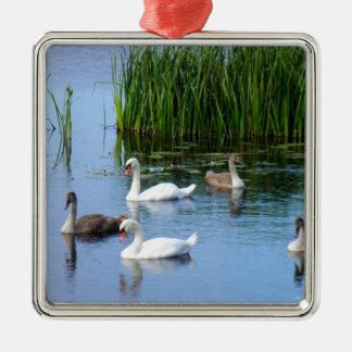 Irish ducks on the River Shannon Silver-Colored Square Decoration
