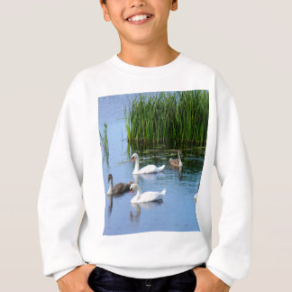 Irish ducks on the River Shannon Sweatshirt