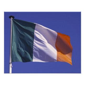 Irish flag photo art