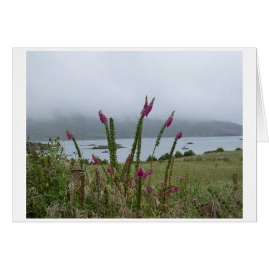 Irish foxgloves and Bere Island Card