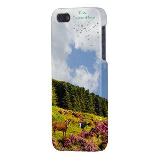 Irish image for iPhone-5-5S-Glossy-Finish-Case iPhone 5 Case