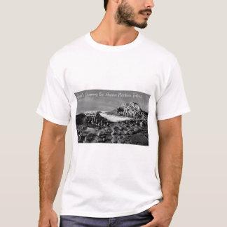 Irish Images for men's t-shirt