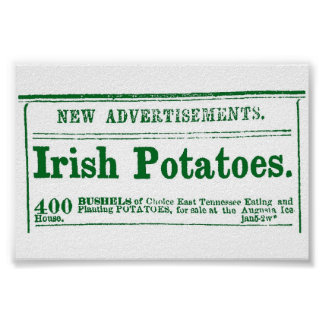 Irish Potato Newspaper Advertisement Civil War era Poster