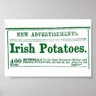 Irish Potato Newspaper Advertisement Civil War era Print