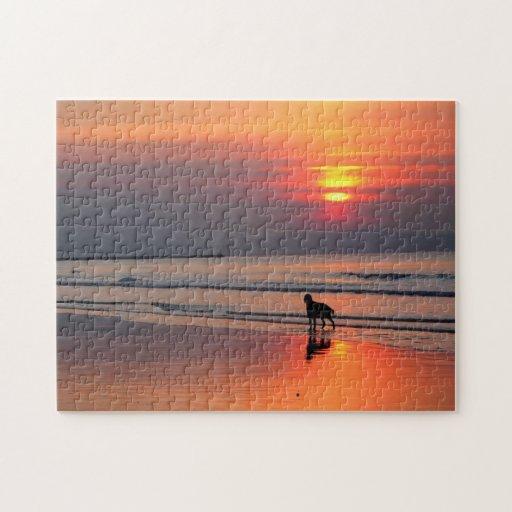 Irish Setter at Sunset by the Irish Sea Puzzle Puzzles