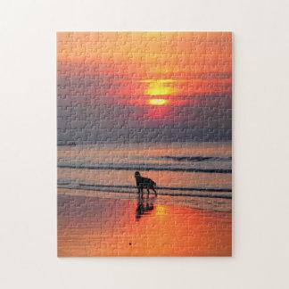 Irish Setter at Sunset on the Irish Sea Puzzle