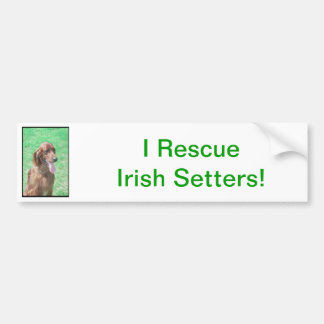 Irish Setter Bumper Sticker