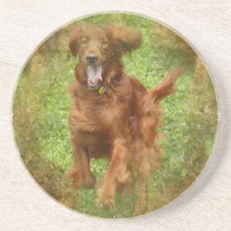 Irish Setter Dog Coasters