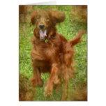 Irish Setter Dog Greeting Card