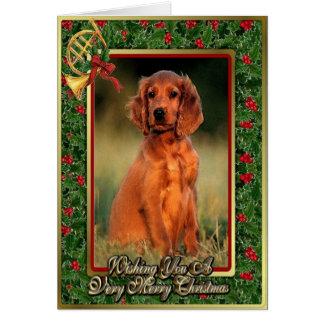 Irish Setter Christmas Cards Photo Card Templates
